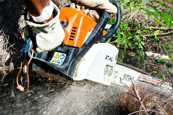 Features-of-Chainsaw