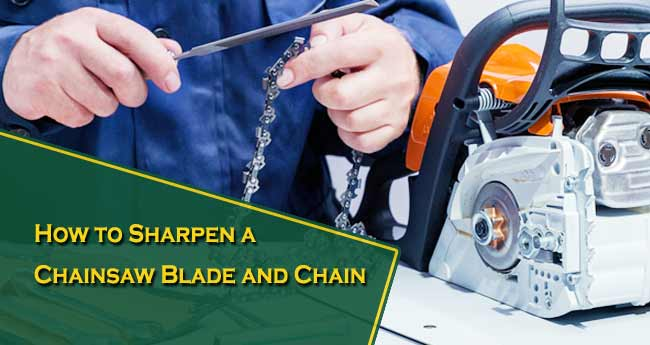 How to Sharpen a Chainsaw Blade and Chain