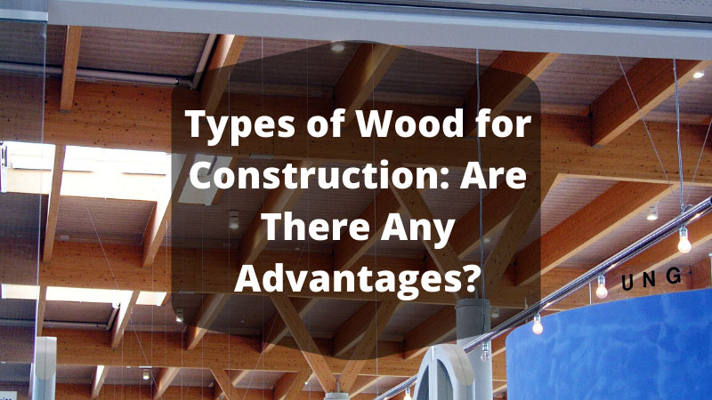 Types of Wood for Construction