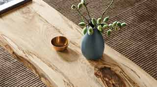 How to Make Spalted Wood