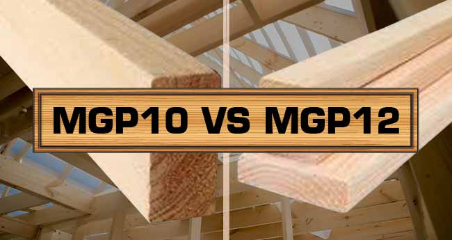difference between mgp10 and mgp12