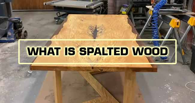 spalted wood definition
