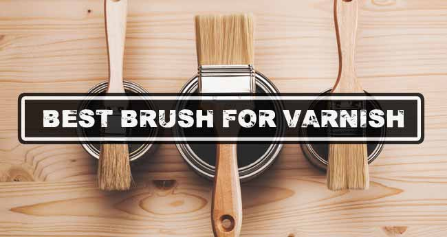 Best Brush For Varnish