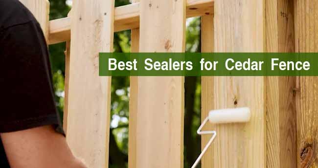 Best Sealers for Cedar Fence