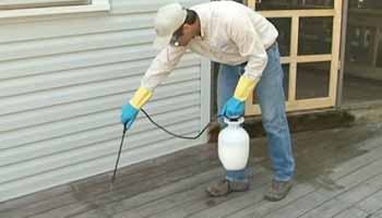 Can You Apply Water Seal with Sprayer