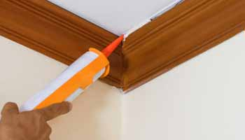 Exterior Caulk for Wood Buying Guide