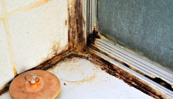 Dealing with Heavier Mold